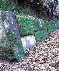 おつぼ山神籠石